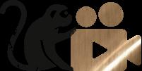 10 Lektionen mit über                     4 Stunden Videomaterial