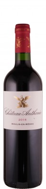 Château Anthonis Chateau Anthonic Cru Bourgeois 2016